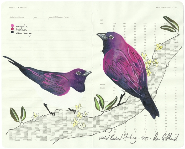 Single . Amethyst Starling