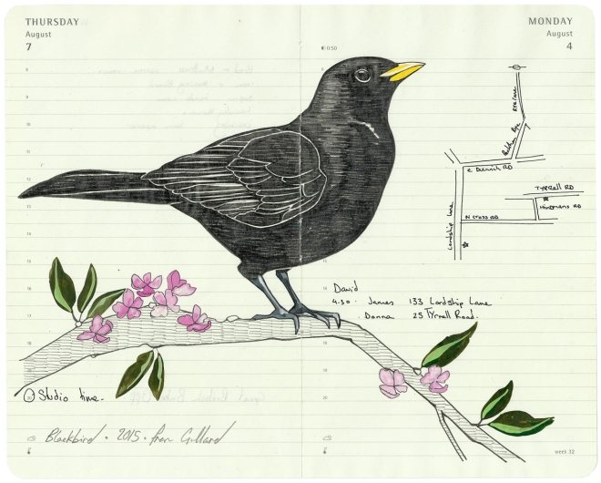 Single . Blackbird